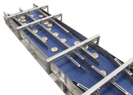 Food grade belt conveyor with guides