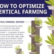 Conveyors for vertical farming